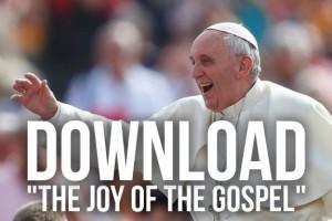 Joy-of-the-Gospel1-300x200